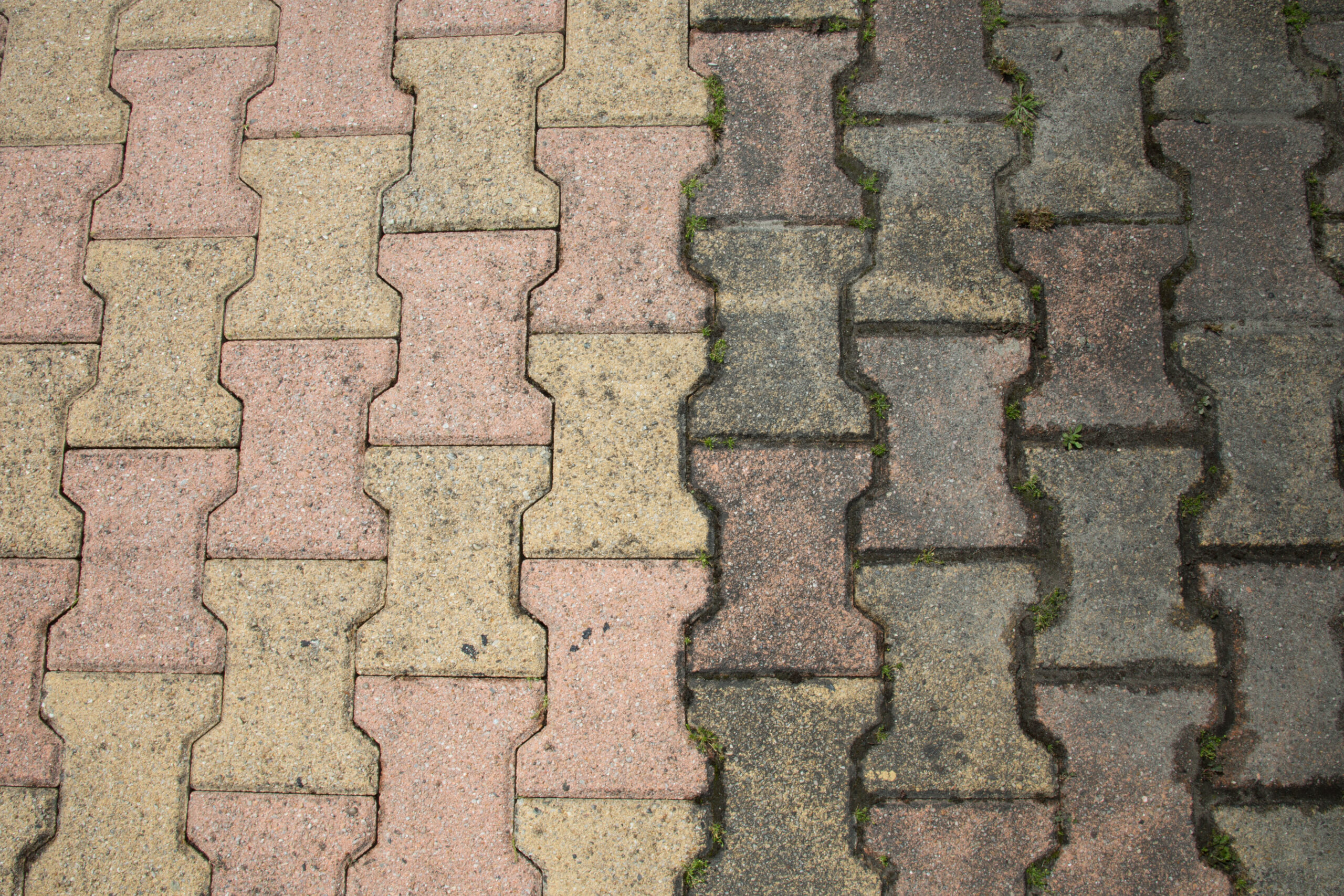 Patio Cleaning in Surrey