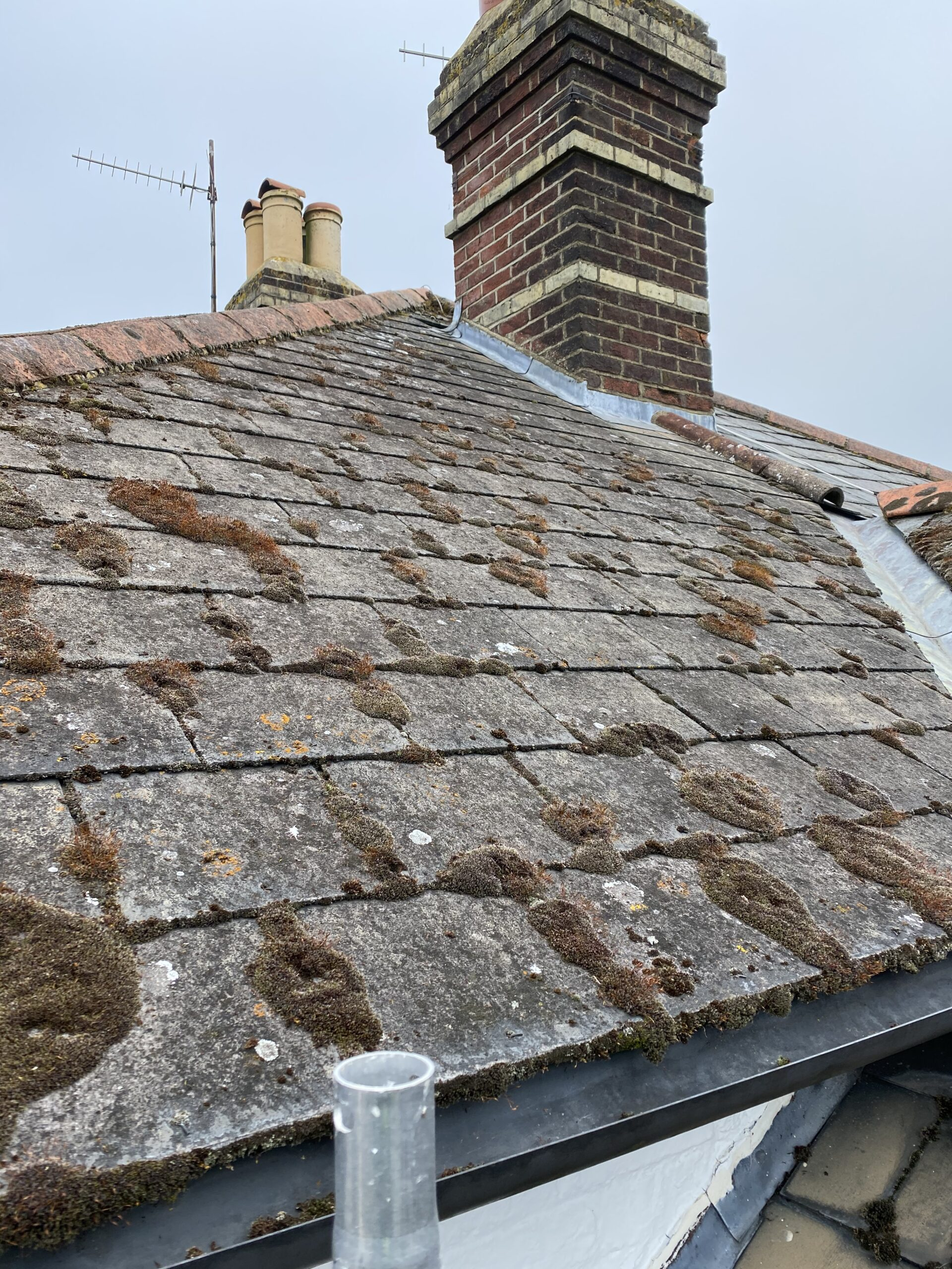 moss removal on roof